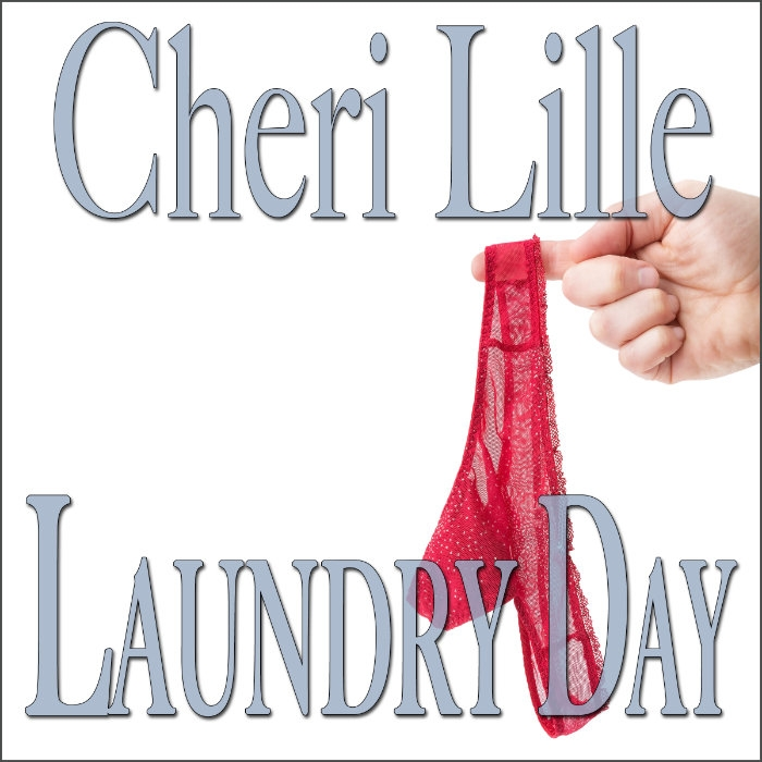 Laundry Day a Short & Sweet Romantic Encounter Audiobook